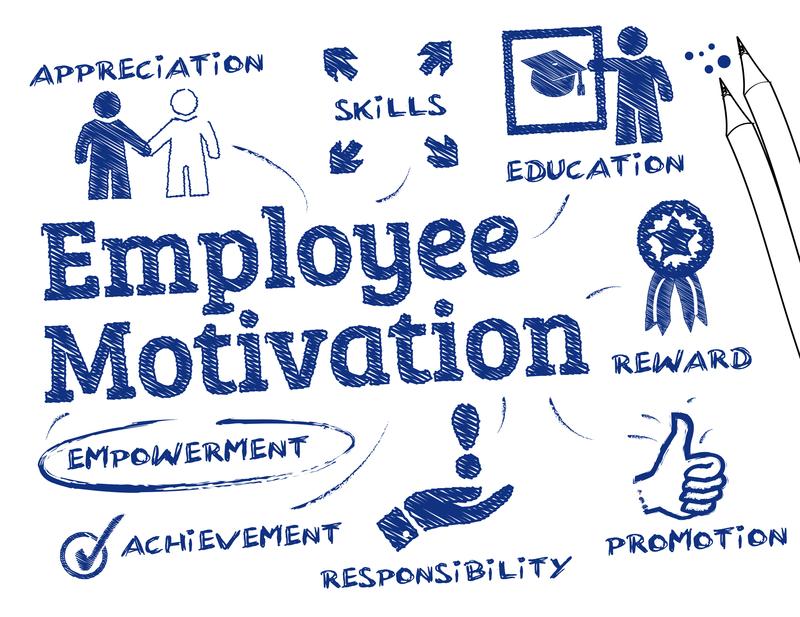 Gør dine medarbejdere stærkere med e-learning